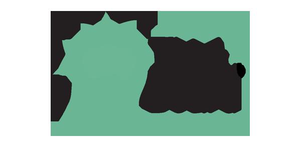 BestBuzz | Dallas Digital Marketing Agency | Clients | Think Board